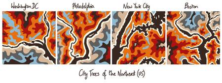 City Trees of the Northeastern US by Bhaval Shah B
