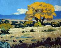 Golden Foothills Cottonwood in the Fall