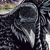 Black Beard Detail Art Prints & Posters by Amanda Brannon