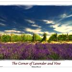 """The Corner of Lavender and Vine"" by RichardDuval"