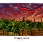 """Vineyard Dawn 2"" by RichardDuval"