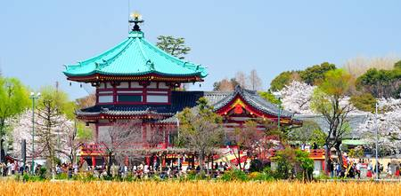 View of Ueno Temple in Sakura