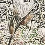 """""""Flower 9"""" by KjWorthing"""