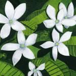 """White Wildflowers"" by StrandStudio"
