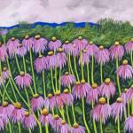 """Echinacea"" by StrandStudio"