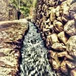 """Flow"" by Bendinglife"