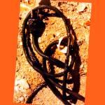 """""""Wireman"""" by ralphnelsen"""