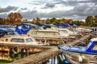 Boats at the Marina