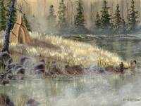 Madison River Camp
