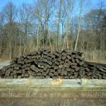 """Pile of Wood on railway ground"" by Aothes"