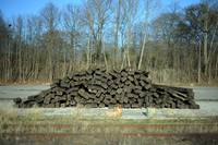 Pile of Wood on railway ground