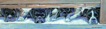 Boxers Waiting for Their Invitation