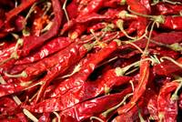 Red Chilies Drying Kathmandu