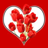 Valentines Heart Tulips Square Wall Art