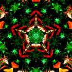 """Orange & Green Star Kaleidoscope Mandala"" by TigerLynx"