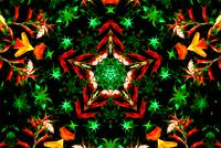 Orange & Green Star Kaleidoscope Mandala