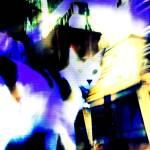 """""""Ska Cat"""" by Wacho"""