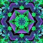 """Hexagonal Purple & Green Kaleidoscope Mandala"" by TigerLynx"