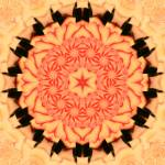 """Pastel Peach Kaleidoscope Mandala"" by TigerLynx"