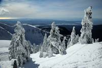 View from Mt Seymour