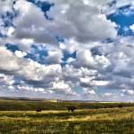 """Fields and Clouds"" by carmoli"