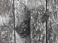 Barn Door Latch B&W