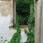 """Old Farmhouse Window"" by evansonart"