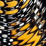 """Monarch Butterfly Wing Abstract No1"" by evansonart"
