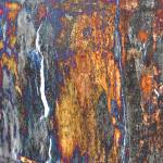 """Old Ash Tree Stump Abstract"" by evansonart"