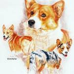 """Welsh Corgi"" by BarbBarcikKeith"
