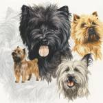 """Cairn Terrier"" by BarbBarcikKeith"