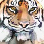 """Tiger Eyes"" by SarahannGraham"