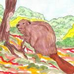 """Beaver"" by DennyPhil"