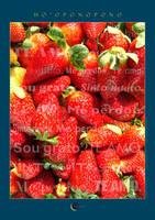 Morangos / Strawberries