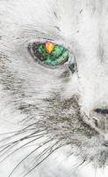 Cat's Eye Abstract