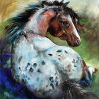 """RESTING APPALOOSA COLT by Marcia Baldwin"" by MBaldwinFineArt2006"