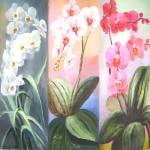 """butterfly orchids trio"" by zhenlian"