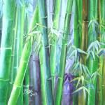 """""""bamboo trio"""" by zhenlian"""