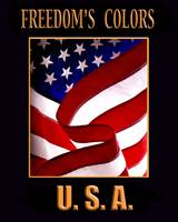 FREEDOM'S COLORS USA