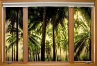 Tropical Jungle Paradise Window Scenic View