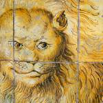 """Lion detail"" by tomwachtel"