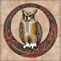 Celtic Owl
