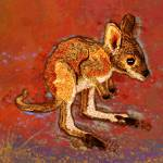"""Kangaroo Joey"" by maryostudio"