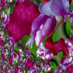 """In Bloom Fractal"" by AprilO"