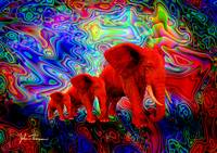 Psychedelic Pachyderms