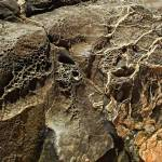 """Rock Veins"" by steveondrusphotography"