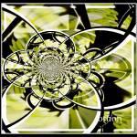 """""""Cut Glass"""" by fancifulflowers"""