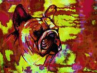 French bulldog pop art
