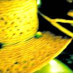 """Chapeaux in Yellow and Green"" by russgiffen"