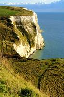 Chalky White Cliffs